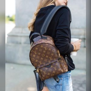 Louis Vuitton Monogram Palm Springs MM